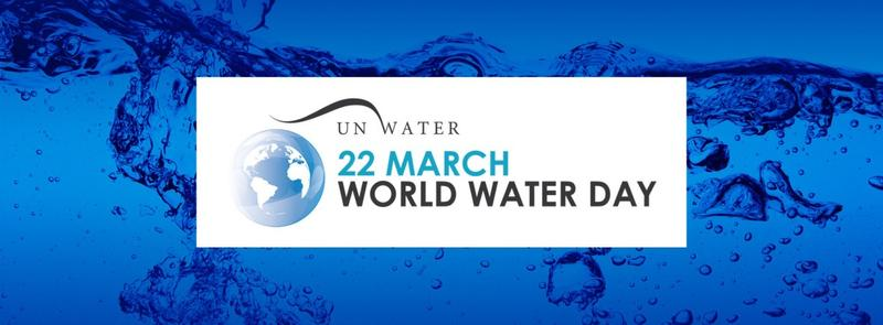 water and world united nations Grammy award-winning rapper pitbull is heading to the united nations to discuss the global water crisis on world water day.