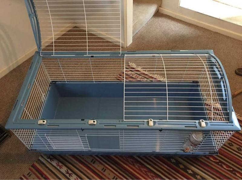 Large indoor rabbit guinea pig cage in ryde expired for Large indoor guinea pig cages